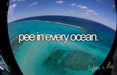 haha for the bucket list, not just see every ocean but pee in it! Just Do It, Just In Case, Funny Bucket List, One Day I Will, Before I Die, Way Of Life, 4 Life, Oh The Places You'll Go, I Laughed