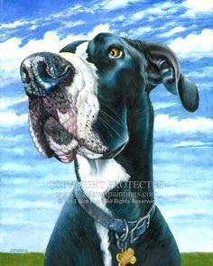 """Bruno"" - Mantle Great Dane pet portrait oil painting on 16"" x 20"" gallery wrap edge canvas."