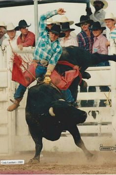 Cody Lambert 1989 champ George Paul Memorial Rodeo Cowboys, Real Cowboys, Cowboy Art, Cowboy And Cowgirl, Cebu, Cody Lambert, Cowgirl Pictures, Professional Bull Riders, Rodeo Time