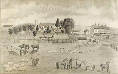 Pencil Drawing, Farm Scene, Feature476