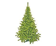 Árvore Duquesa Real - 180cm