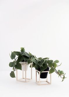 Diy Plant Stand-Aside from the fact that plants look great, the reality is that they also do a very good job at making your home healthier. They eliminate the high levels of CO2 and they are extremely helpful in this regard. On the other hand, you can bring in front some solutions that will make your plants look great and a lot more interesting. Here are some impressive ideas that you can focus on and which will bring you a rather distinct visual experience. Some of these ideas are…