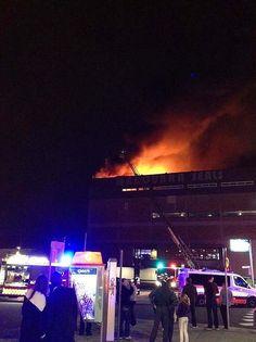 Pretty big blaze ~ Maroubra Seals on fire! Sports Clubs, Seals, Firefighter, Sydney, Battle, Surfing, Big, Pretty, Stamps