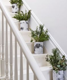 Elevate a staircase naturally, with birch vessels (they don't tip easily) sprouting greens. Here the mix is juniper, white pine, boxwood, and seeded eucalyptus, but any mix of several textures works. Place in a Ball jar with water, then set the jar inside the birch holder. (This setup makes it easy to change the water.) If the stems are very woody, pound the ends with a hammer to open them up a bit—they'll drink better.