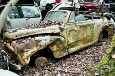 Abandoned Vehicles, Abandoned Cars, Car Barn, Rusty Cars, Barn Finds, Hot Cars, Restore, Things That Bounce, Antique Cars