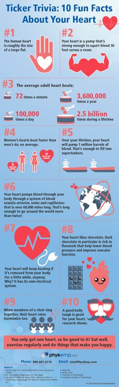 10 Fun Facts About the Human Heart! (Just in time for #ValentinesDay) #hearthealth