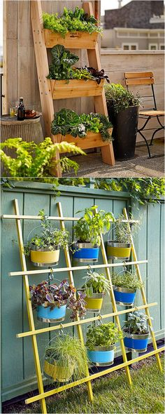 Garden Trellis Vertical Container Garden: Make a large trellis to showcase hanging plants or elevate herbs.Trellis Vertical Container Garden: Make a large trellis to showcase hanging plants or elevate herbs. Jardim Vertical Diy, Vertical Garden Diy, Vertical Gardens, Small Gardens, Outdoor Gardens, Vertical Planting, Hanging Gardens, Easy Garden, Verticle Herb Garden