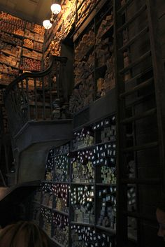 Ollivanders Wand Shop. Can't wait to go there.
