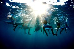 Morgan Maassen,  - Red Bull Illume: I captured them one morning in this shot, discussing in the crystalline water anything from the surf they were enjoying to homework they forgot at home.
