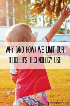 We made the decision not to expose our baby or toddler to any technology. It's been a worthwhile journey. Here's how and why we're doing it.