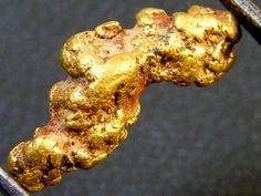 AUSTRALIAN GOLD NUGGET 1.88 GRAMS LGN 70  AUSTRALIAN GOLD NUGGET GEMSTONE FROM GEMROCKAUCTIONS.COM