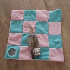 Ferret Clothes, Ferret Toys, Pet Ferret, Pet Rats, Ferrets Care, Cute Ferrets, Ferret Accessories, Rat Hammock, Cage