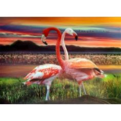 Lrg High Def Pic - FlamingosPrint on HD Sheets (hard). Made with thick high quality plastic board. Art Loft, Plastic Board, 3d Sheets, 3d Pictures, Game Birds, 3d Prints, Animals, Image, High Definition