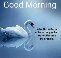 Good Morning Hindi Messages, Good Morning Greeting Cards, Good Morning Greetings, Good Morning Wishes, Tuesday Quotes Good Morning, Happy Morning Quotes, Good Morning Flowers, Good Thoughts Quotes, Positive Inspiration
