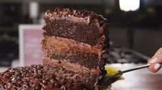 Death by Chocolate Cake  - Delish.com