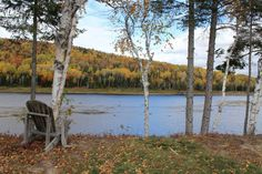 Check out this awesome listing on Airbnb: Riverfront cabins on the St John River in Allagash - Cabins for Rent in Allagash Wilderness Survival, Survival Gear, Northern Maine, The St, Perfect Place, Places To See, Condo, River, Vacation