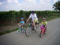 Toto milujem : Raj (nielen) pre cyklistov pri jazere Neusiedler S...