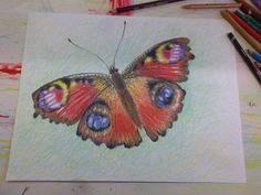 Vlinder. kleurpotlood op aquarelpapier.