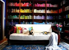 Love the way this shelf looks, but how would you find your books? (I like the pug on the couch, too!)