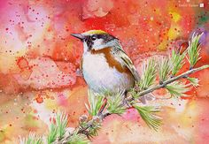 Dobril Yankov   Watercolour