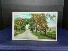 Post Card Motoring Though The Pine Tree State dated: 8/4/1931, one cent stamp