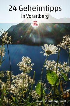 Was macht Vorarlberg so besonders? GastgeberInnen verraten Ihre Geheimtipps für Urlaub und Freizeit in Vorarlberg. Empfehlungen zwischen Bodensee und den Gletschern um Natur, Kultur und Kulinarik zu erleben und entdecken. Selfies, Travelling, Adventure, Nice, Nature, Helpful Tips, Hush Hush, Mathematics, Travel Advice