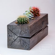 Below are the Wood Succulent Planter Ideas Of Unused Wood. This article about Wood Succulent Planter Ideas Of Unused Wood was posted under the Outdoor category by our team at August 2019 at pm. Hope you enjoy it . Succulent Cuttings, Plant Cuttings, Planting Succulents, Wooden Planters, Planter Boxes, Planter Ideas, Perfect Plants, Succulents In Containers, Cactus Y Suculentas