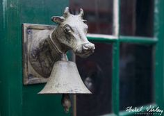Do not mess to ring a bell!