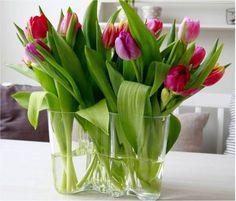 Aalto Savoy with tulips - centrepiece dream Flower Studio, Table Flowers, Pretty Flowers, Finland, Flower Arrangements, Glass Vase, Cool Designs, Centerpieces, Alvar Aalto