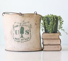 Vintage US Forest Service Pail Department of by bellalulu on Etsy