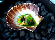 Mikael Leiknes - The ChefsTalk Project - Scallops, peas and avruga Chefs, Seafood Diet, Food Plating, Plating Ideas, Food Stall, Molecular Gastronomy, Good Food, Fun Food, Food Art