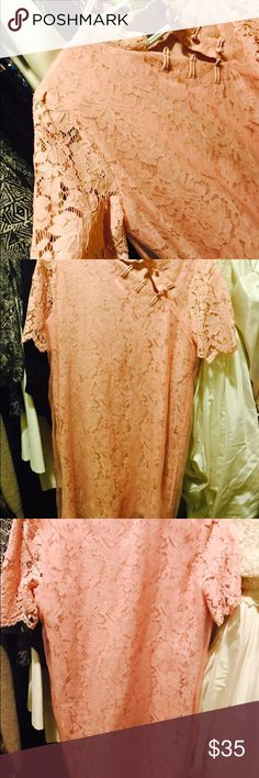 100% Silk Lace shift dress Mandarin Collar NWT This gentle pink/mauve dress is NWT and perfect for the special occasion for which you just can't wear black! Retails for $150! Size XL, it gives a short but not too short feel, this elegant Chinese style shift dress is yours for the taking at a fraction of the price. Wedding, church, wear it any place you need to look classy chic! New with tags- never worn! DDER/ STYLEWE Dresses