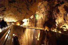 The bridge inside Škocjan cave