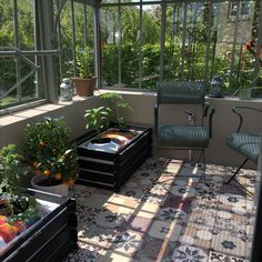 Greenhouse floor made with old egyptian reclaimed tiles.