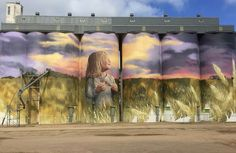The ultimate road trip guide to cruising around South Australia and checking out all the large format art that's popped up over the years! 3d Street Art, Street Artists, David Zinn, Graffiti Art, Art Public, Pavement Art, Barn Art, Building Art, Art Mural