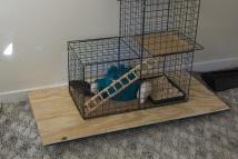 9 Cages Your Pet Rat Will Love: Martin's Skyscraper (R-695)
