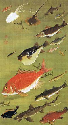 """動植綵絵 第三期 ( 1765-1766 ) ,28. 群魚図(鯛)[ぐんぎょず たい], """"Pictures of the Colorful Realm of Living Beings"""", Jakuchu Ito"""