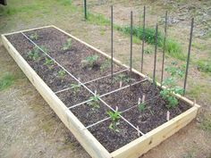 Square Foot Gardening Anyone? (seeding, rabbits, summer, pump) - Trees, Grass, Lawn, Flowers, Irrigation, Landscaping... - Page 11 - City-Data Forum