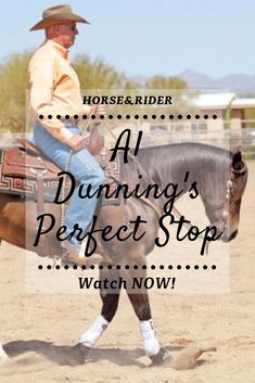 How to stop your horse using leg, rein and seat cues. Horse Training Tips, Horse Tips, Training Videos, Horse Barns, Horse Stalls, Trail Riding Horses, Ranch Riding, Reining Horses, Western Riding