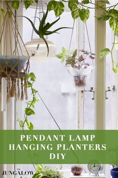 Pendant Lamp Hanging Planters | DIY on The Jungalow