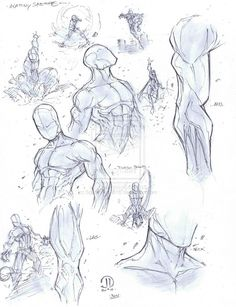 Anatomy warm ups by JoeyVazquez on deviantART
