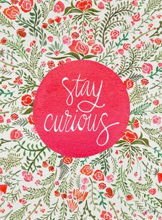 Stay Curious - Pink & Green Art Print by Cat Coquillette - X-Small Inspirational Phone Wallpaper, Wallpaper Quotes, Happy Wallpaper, Green Art, Pink And Green, Inspirational Phrases, Inspiring Quotes, Motivational Quotes, Nice Quotes