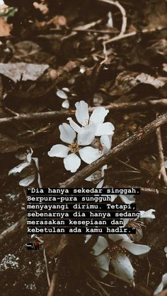 Why so sad. Tired Quotes, Quotes Rindu, Tumblr Quotes, Mood Quotes, People Quotes, Daily Quotes, Best Friend Quotes, Best Quotes, Beautiful Words In English