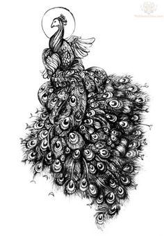 Peacock design. <3
