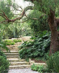 stairs through a garden
