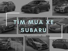 Tư vấn khi bạn tìm mua xe Subaru