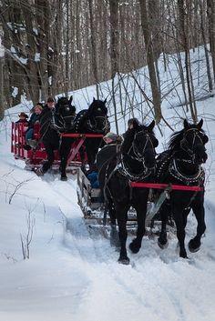 Winter sleigh rides, Black Horse Farm, Traverse City, Michigan