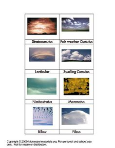 Yes!  Montessori nomenclature picture cards: Water Cycle, Animal Anatomy, Astronomy, Energy, Shells, Dinosaurs, Microscope, Birds.....