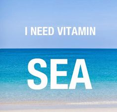 need a vacation meme - Yahoo Image Search Results Vacation Meme, Need A Vacation, Vacation Quotes, Scuba Diving Quotes, I Need Vitamin Sea, Travel Quotes, Be Yourself Quotes, Vitamins, Hilarious