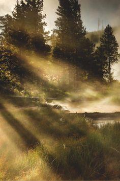 Yellowstone National Park   Rebecca Harkness #travel #wanderlust #america